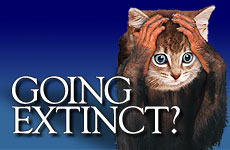 Going Extinct?